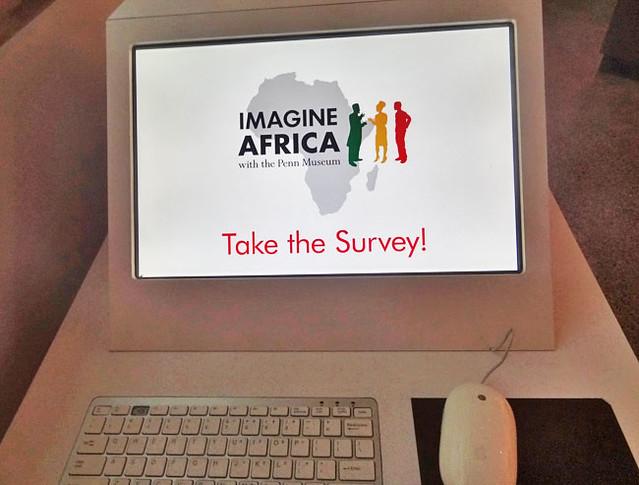 imagine-africa-survey