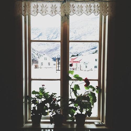 instagram - december.