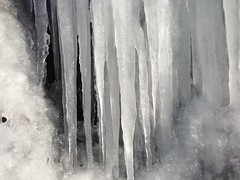snow(0.0), formation(0.0), blizzard(0.0), ice cave(1.0), winter(1.0), ice(1.0), monochrome photography(1.0), icicle(1.0), monochrome(1.0), winter storm(1.0), black-and-white(1.0), freezing(1.0),