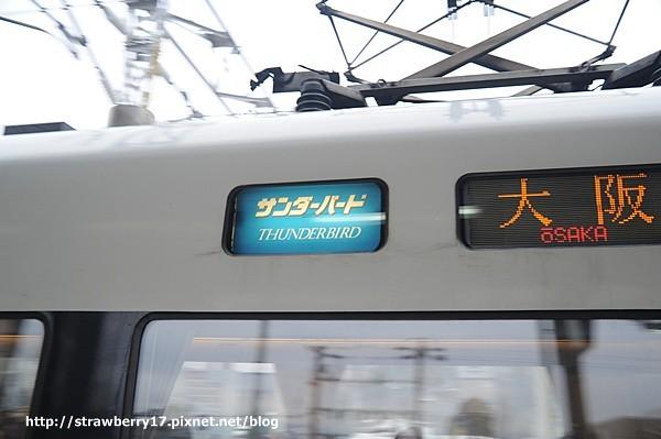 DSC_9158.jpg
