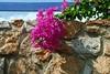 Kreta 2007-2 174