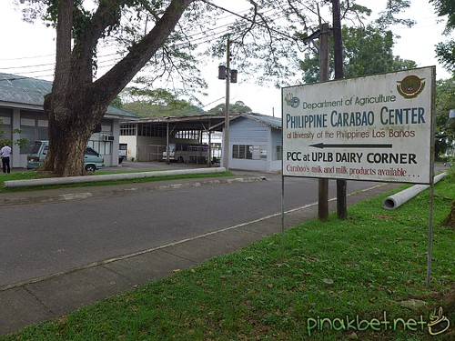 Philippine Carabao Center in UPLB