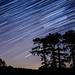 Wotton Hill star trails by Matt Bigwood