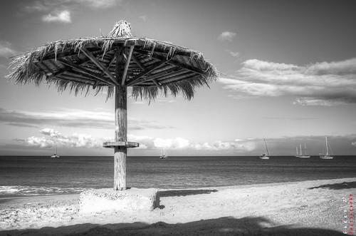 beach landscape stlucia reduit blackwhitephotos