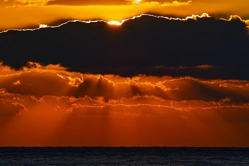 [フリー画像素材] 自然風景, 空, 雲, 朝焼け・夕焼け, 薄明光線, 水平線 ID:201301260600