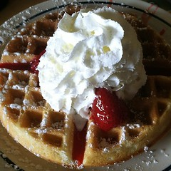 19/365:  This is what an eight dollar waffle looks like... by AuntCharChar