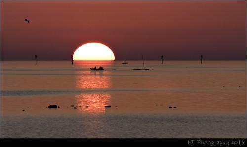 sunset red orange sun fish reflection gulfofmexico nature water colors beautiful set tampa bay boat photo fishing nikon fishermen gulf tampabay dusk fl lowtide tamron goldenhour brids tampafl 70300 nf tamron70300 tamronsp nfphotography d3100 nikond3100 tamronsp70300 nickfedele