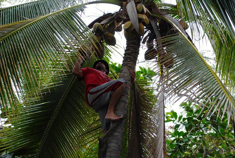 Keawekaheka Bay