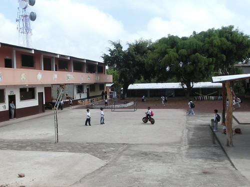 CIMG3501