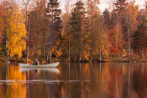 autumn sunset man reflection tree water forest finland leaf branch rowboat birch jyväskylä palokkajärvi canon40d 366project sigma150500mmf563apodgoshsm
