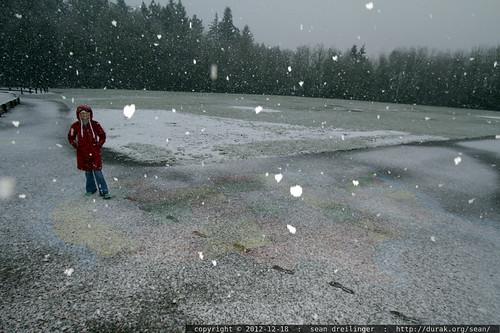it's snowing on oregon   rachel, walking home from school in the falling snow    MG 0590