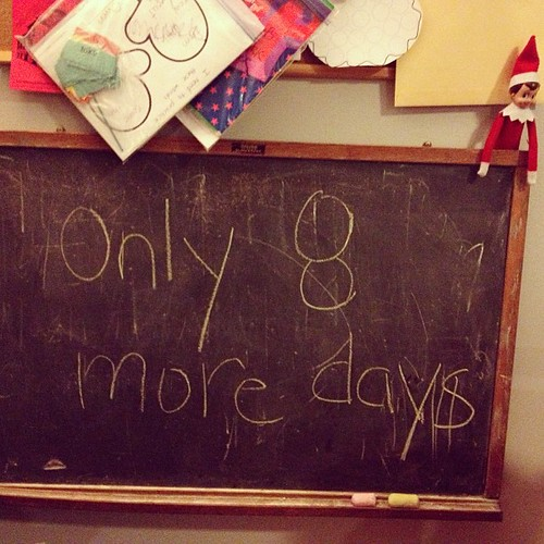 Snowball's countdown #elfontheshelf