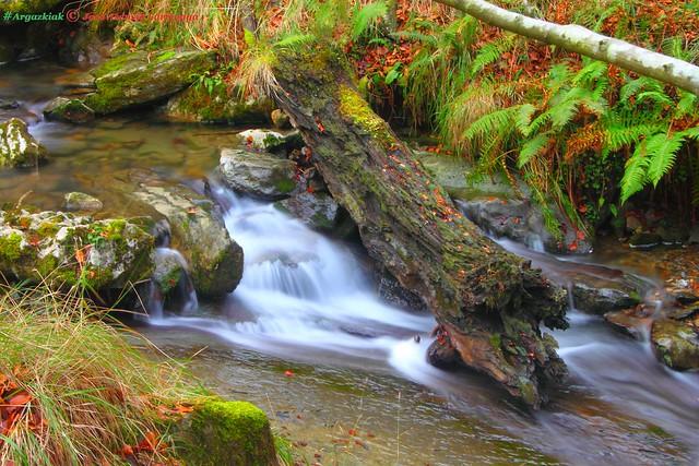 Cascada. Efecto Seda #Photography #Foto #Flickr 94