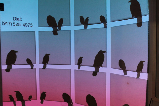 Bird on a Wire - ITP Spring Show