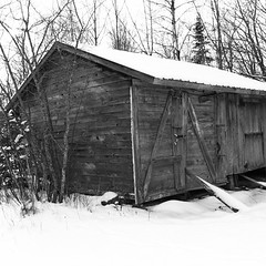 building(1.0), hut(1.0), winter(1.0), snow(1.0), shack(1.0), monochrome photography(1.0), sugar house(1.0), shed(1.0), monochrome(1.0), black-and-white(1.0),