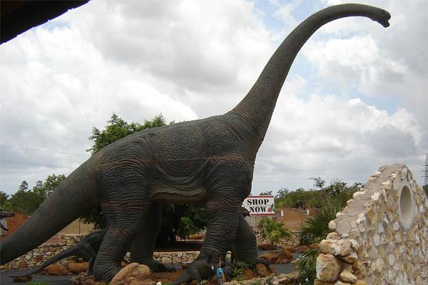 Life Size Animatronic Brontosaurus Dinosaur