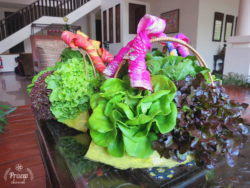 Fresh Hydroponic Vegetables in Baskets ... Happy New Year