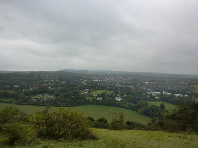 Dorking seen from the top of Box Hill