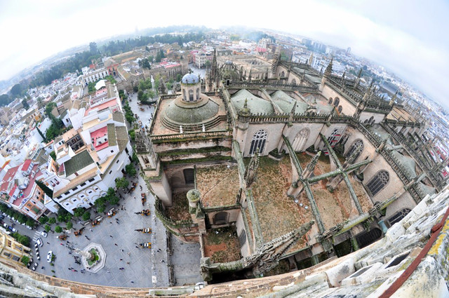 Vista Exterior de la Catedral desde la Giralda Catedral de Sevilla, sepulcro de la historia de américa - 8323101616 ec0c346b6b z - Catedral de Sevilla, sepulcro de la historia de américa