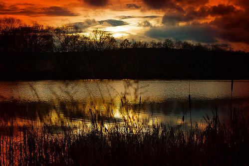 Abend am Teich