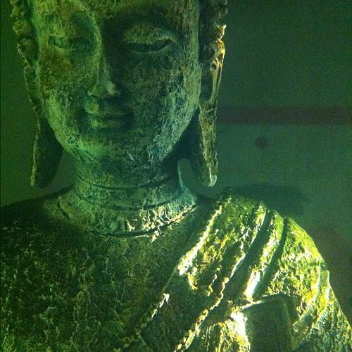 Fish tank Buddha