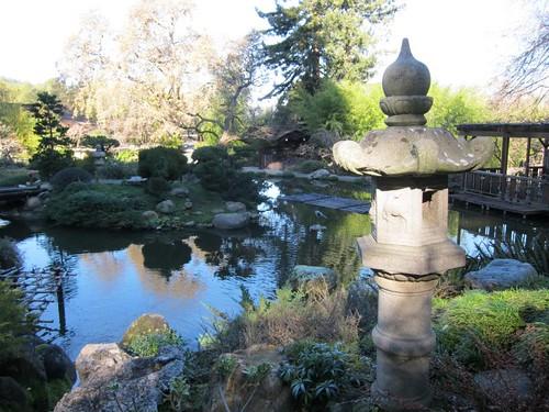 Hakone Japanese Gardens, Saratoga, CA, pond… IMG_2438