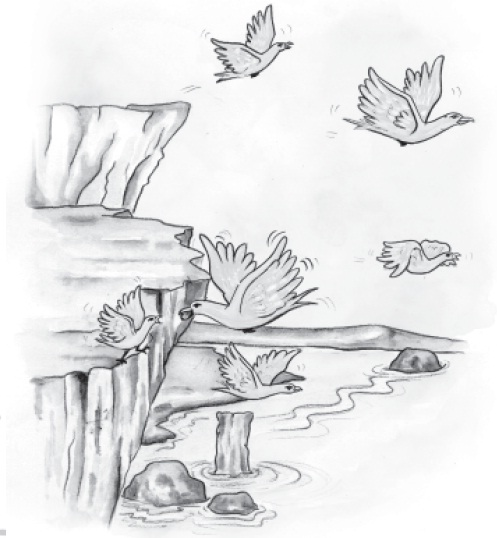 NCERT Class X English: Chapter 3 - Two Stories about Flying