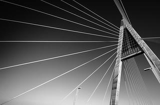 Megyeri híd (megint)