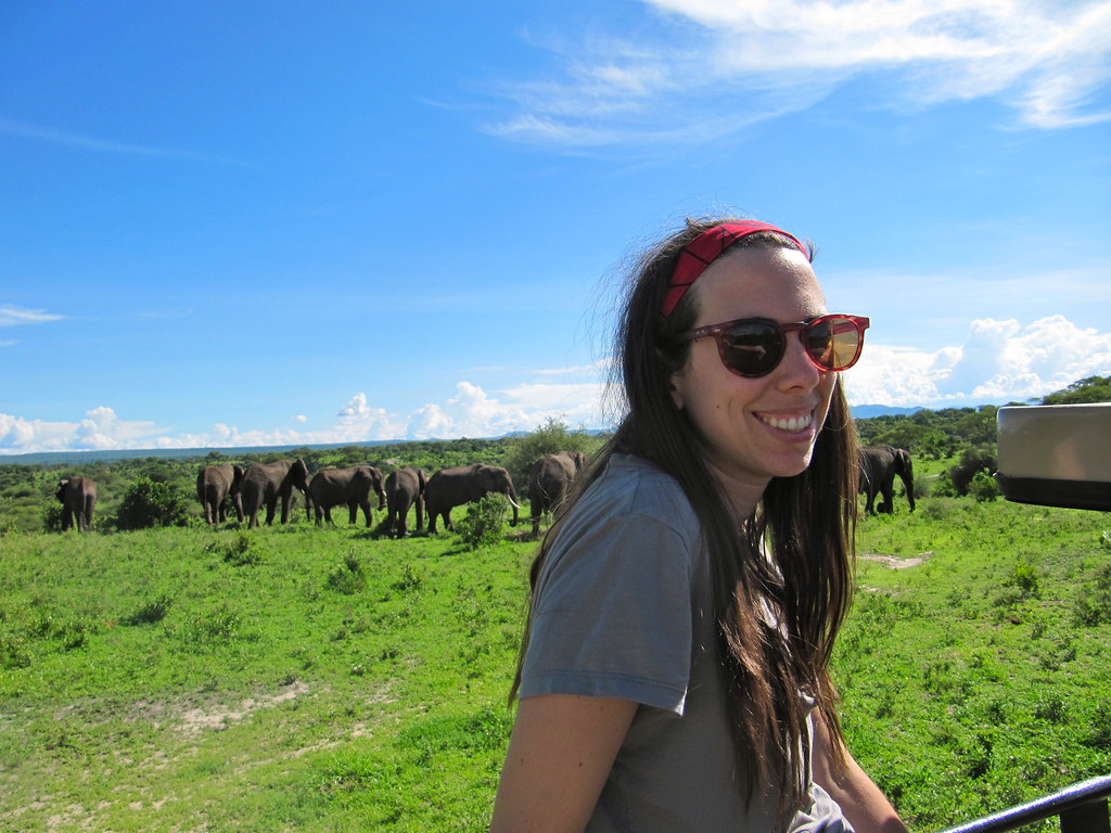 the author hanging with elephants in Tanzania