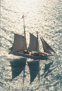 Schooner Western Union returning to Key West, Florida