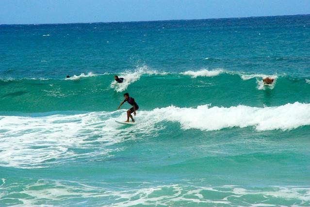 Surf essay