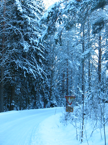 winter roads in Sweden