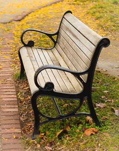 old friends fall alexandria leaves bench 50mm virginia town nikon va 18 50 towne 18g d7000