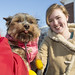 20121208_mac_dogdays_130