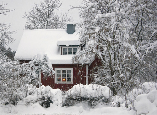 Winter in Sweden by Steffe