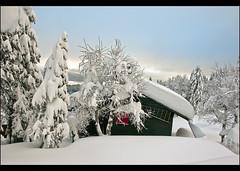 La Vue des Alpes, Canton of Neuchâtel. December 8 , 2012.No. 1368.
