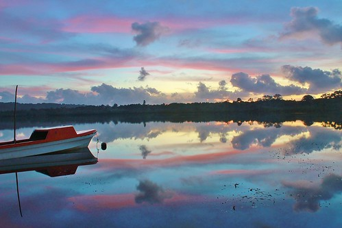 trees reflection water colors silhouette sunrise reflections relax bright lagoon tropical vanuatu portvila efate erakor poppysonthelagoon