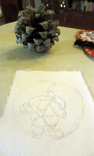 pinecone step by step 1