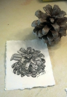 pinecone step by step