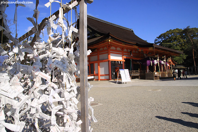 yasaka shrine dreams