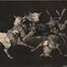 Lluvia de toros by Biblioteca Nacional de España