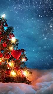 Christmas-Tree1-1136x640