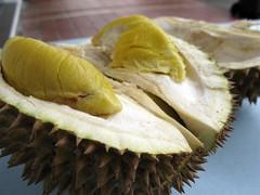 coconut(0.0), plant(0.0), produce(0.0), fruit(1.0), food(1.0), durian(1.0),