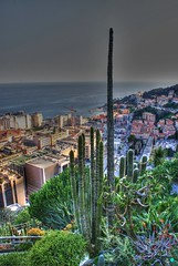 Jardin Exotice de Monaco