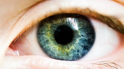 macro eye canon eos 50d