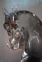 Equus caballus de verre