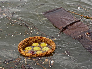 fruit basket in the river