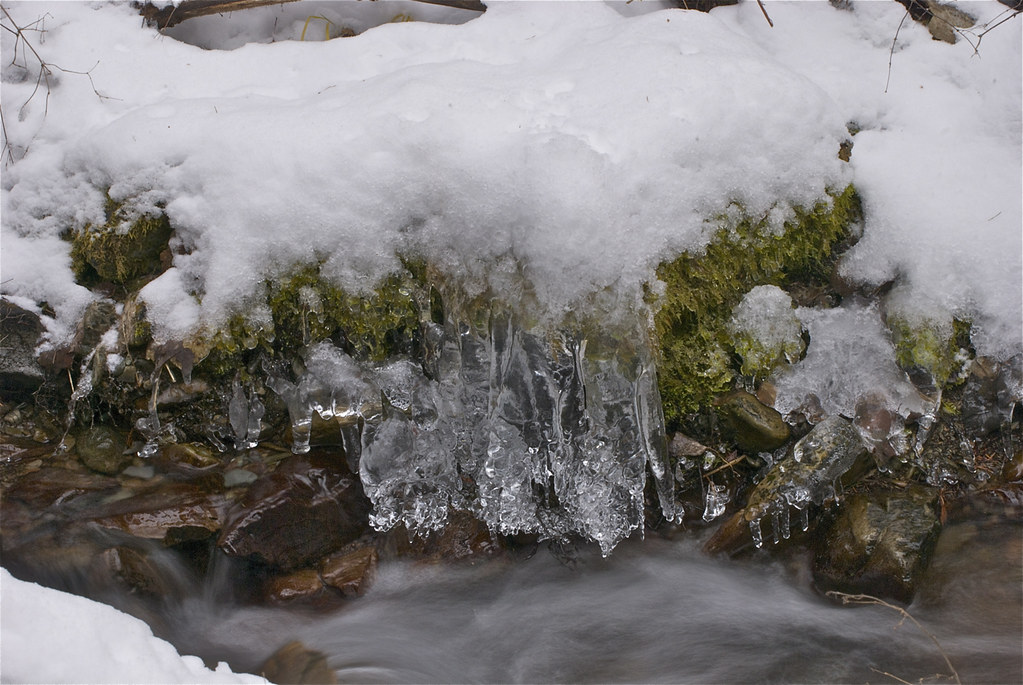 Ice on Munson Creek