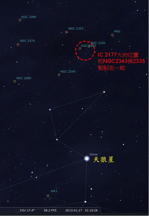 冬夜展翅 - 海鷗星雲