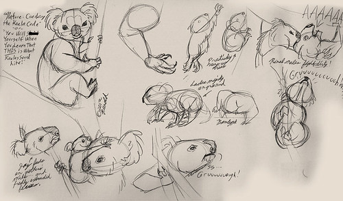 "1.20.13 - ""Nature: Cracking the Koala Code"" sketches"